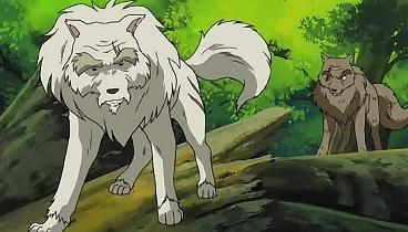 Inuyasha Temporada 02 Capitulo 56 - La invitación misteriosa de una princesa